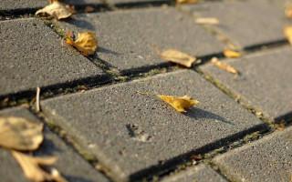 Состав бетона для тротуарной плитки; основные компоненты и тонкости изготовления